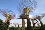 Alla scoperta dell'esclusivo mercato immobiliare di Singapore
