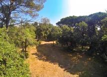 Vente terrain Le Muy  1250 m2
